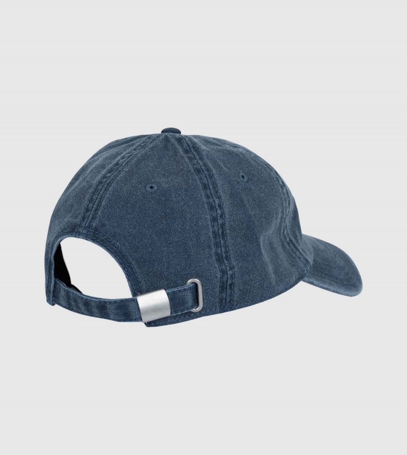 Digg IE Cap. Navy color back