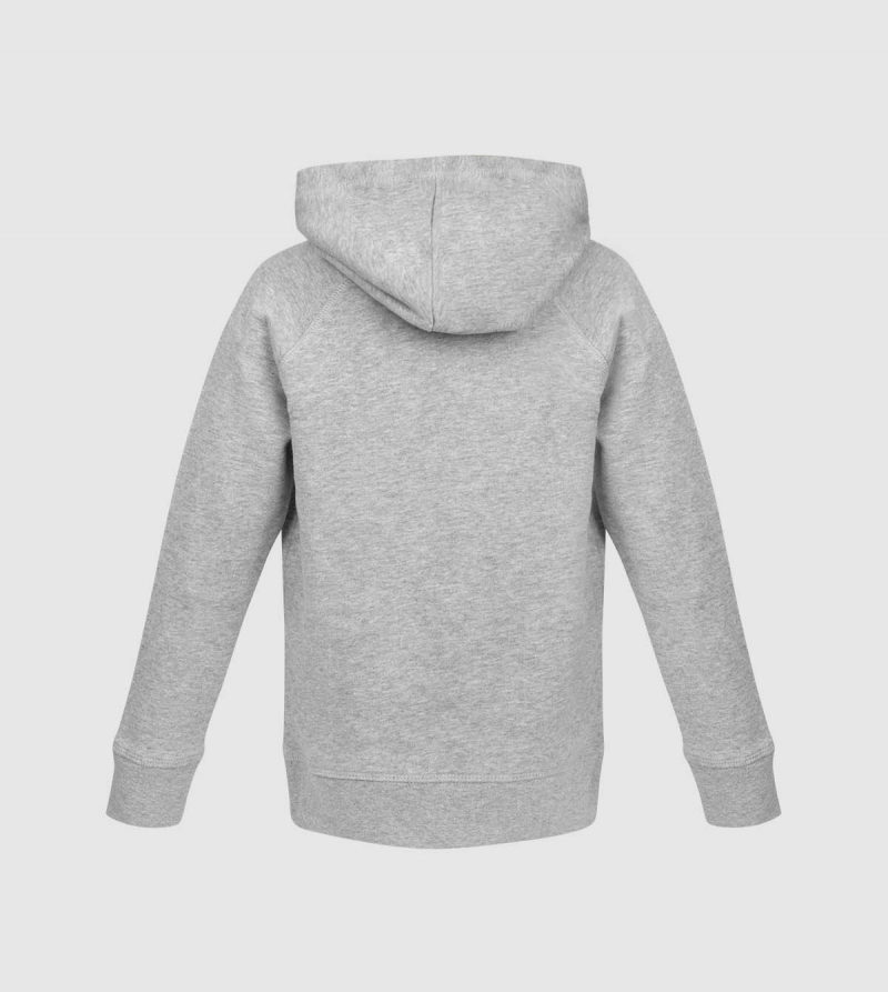 IE University Kids Hoodie. Grey color back