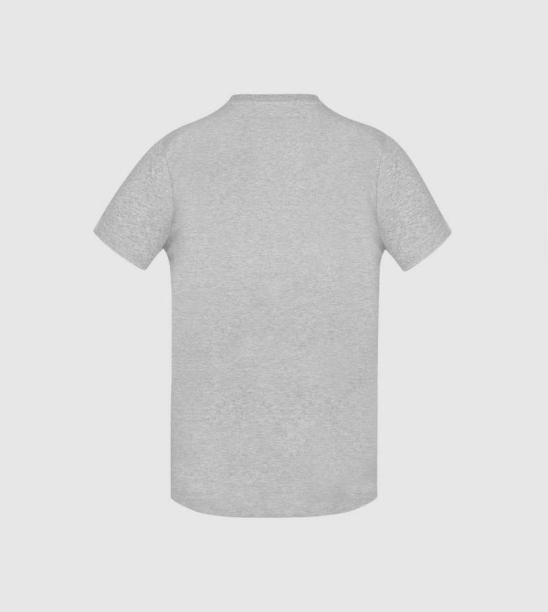 Camiseta IE Law de color gris back