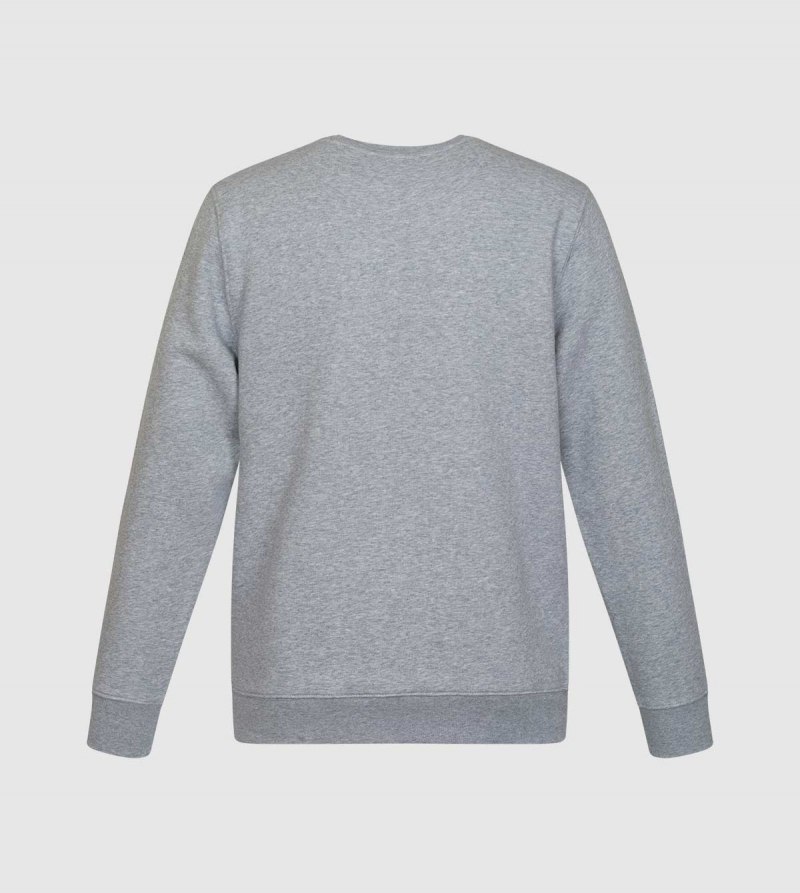 Sudadera Changer IE University. Color gris back