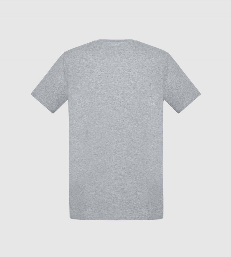 Camiseta IE. Color gris back