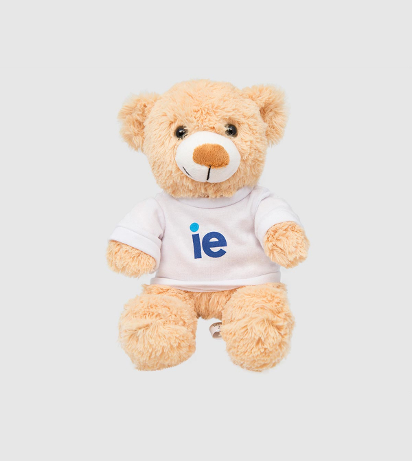 IE Teddy Bear. Brown color front